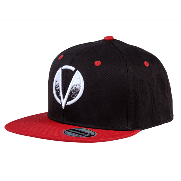 BORDERLANDS 3 SNAPBACK CHILDREN OF THE VAULT 2